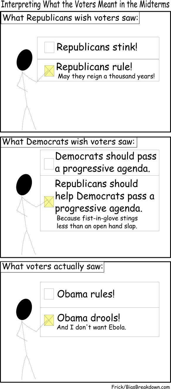 What Voters Meant In The Midterm Elections